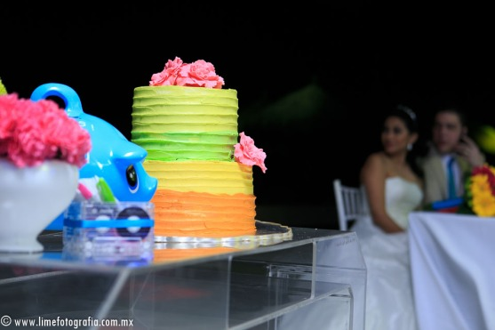 Lime Fotografia de boda en playa Puerto Vallarta Beach Wedding photography Club Regina_021415__Blanca+Carlos_2035