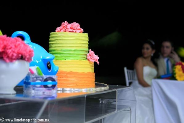 Lime Fotografia de boda en playa Puerto Vallarta Beach Wedding photography Club Regina_021415__Blanca+Carlos_2035