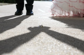 Hilton Puerto Vallarta Beach Wedding Pictures